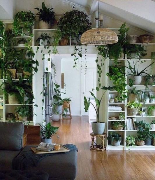 πολλά φυτά ράφια τάσεις διακόσμηση 2021