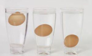 έλεγξε τα αυγά