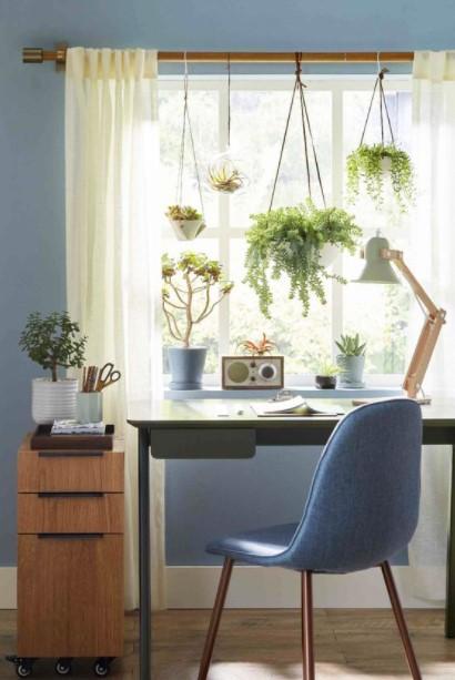 γραφείο φυτά κρεμασμένα κουρτινόξυλο