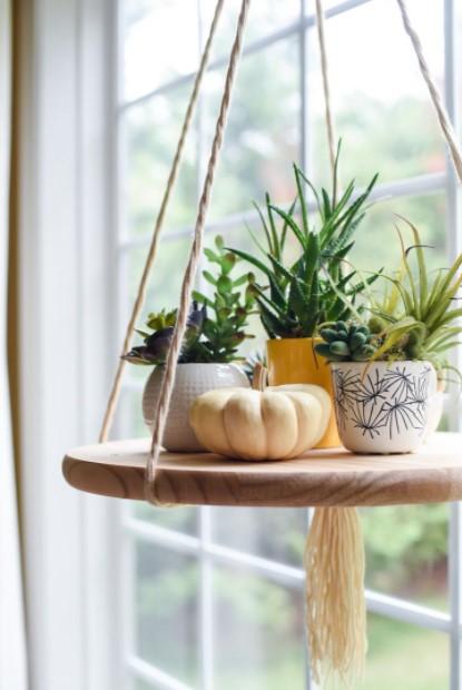 κρεμαστό ράφι φυτά