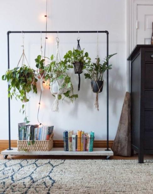κρεμάστρα ρούχων φυτά