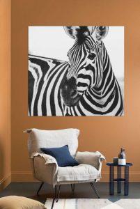 πίνακας τοίχου ζέβρα