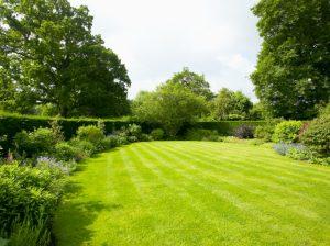πράσινος μεγάλος κήπος