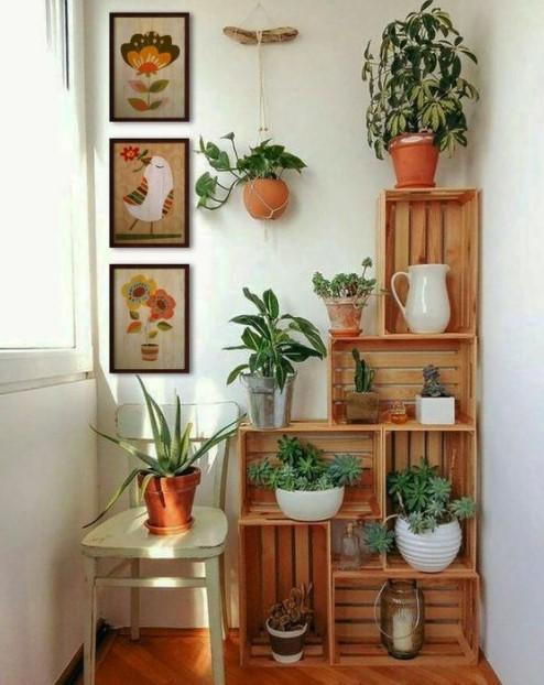 καφάσια διακοσμημένα φυτά διακοσμήσεις καφάσια
