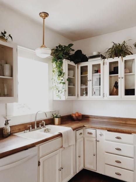 κουζίνα φυτά κενό ντουλάπια κουζίνας