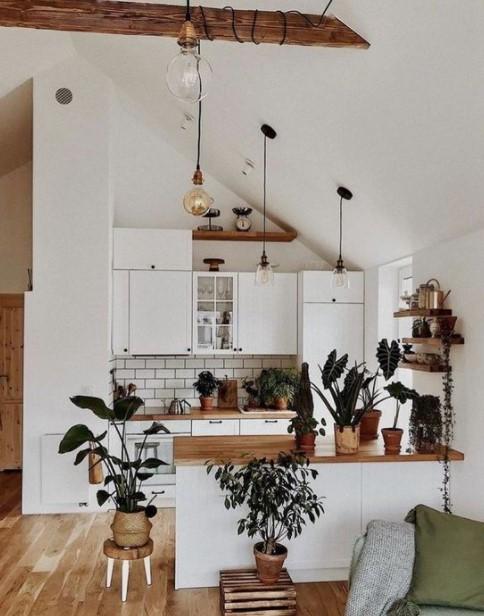κουζίνα πολλά φυτά διακοσμήσεις μικρή κουζίνα