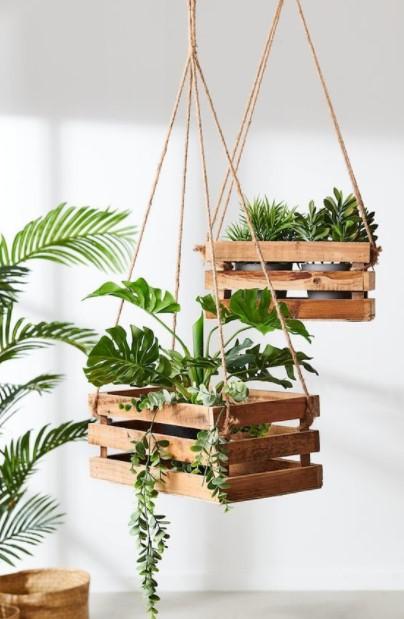 κρεμαστά φυτά ξύλινα καφάσια