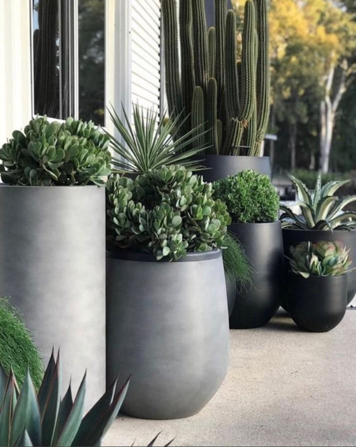 μεγάλες γλάστρες με φυτά
