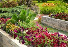 παρτέρια λουλούδια τάσεις διακόσμηση κήπου 2021