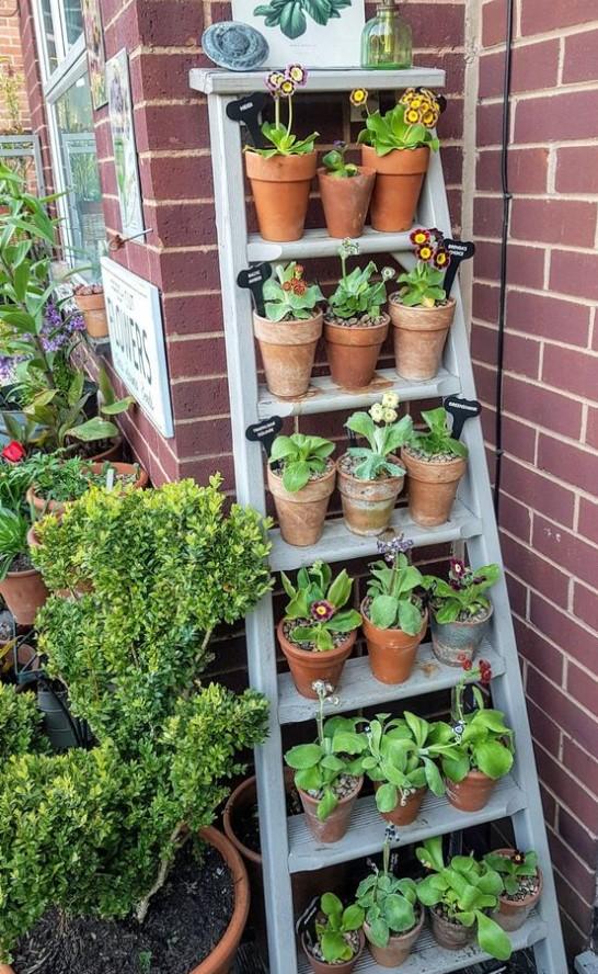 σκάλα με γλάστρες και φυτά