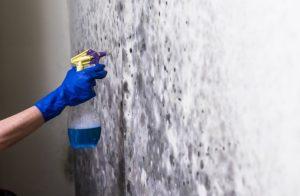 καλύψεις τοίχο υγρασία