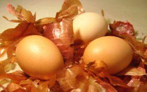 φλουδες απο κρεμμυδια αυγα