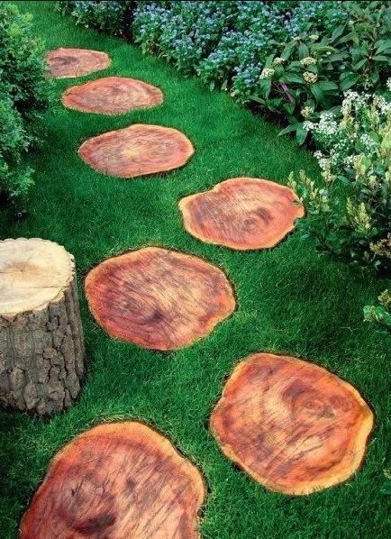διάδρομος κορμοί δέντρων διάδρομοι κήπο