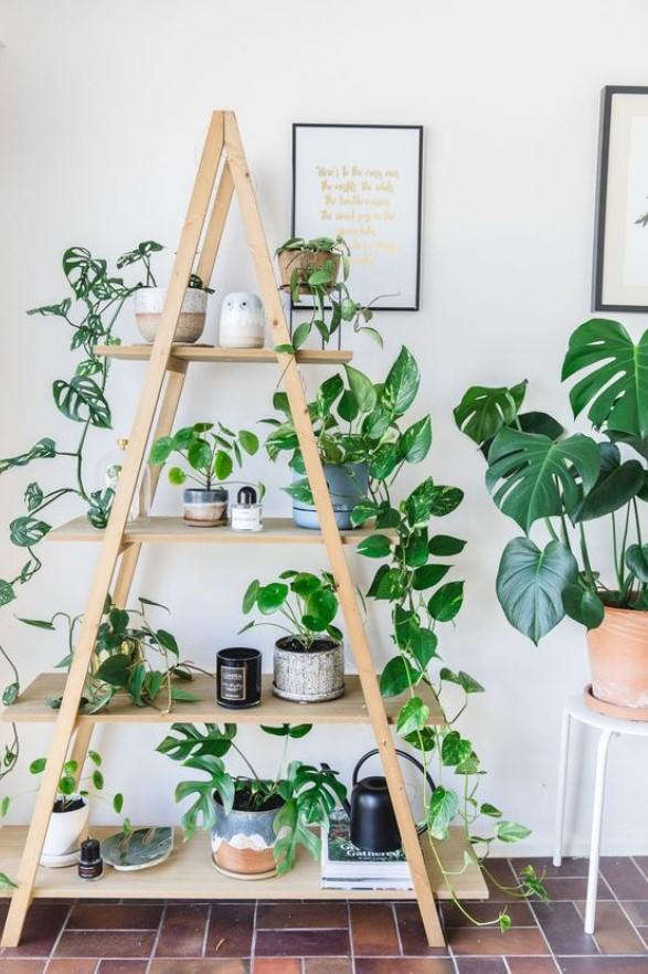 διακοσμητική σκάλα για φυτά