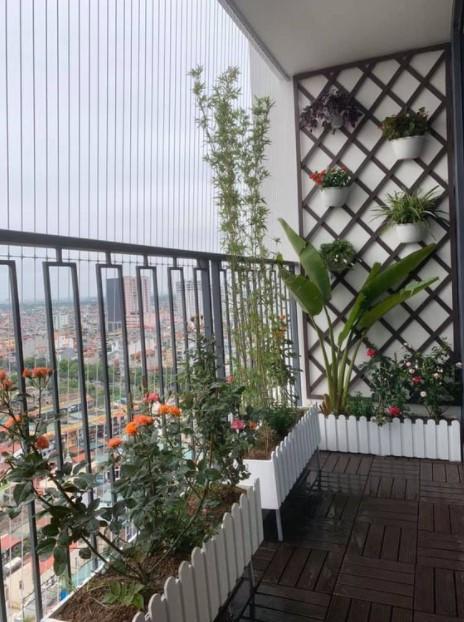 γλάστρες μπαλκόνι φυτά