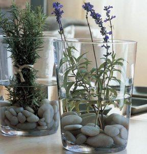 ποτηρι με βοτσαλα και φυτα