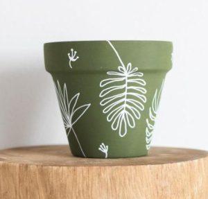 πρασινη γλαστρα με φυλλα