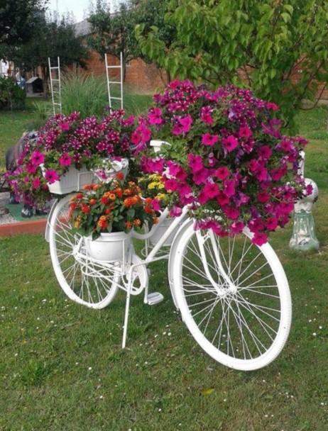 άσπρο ποδήλατο λουλούδια