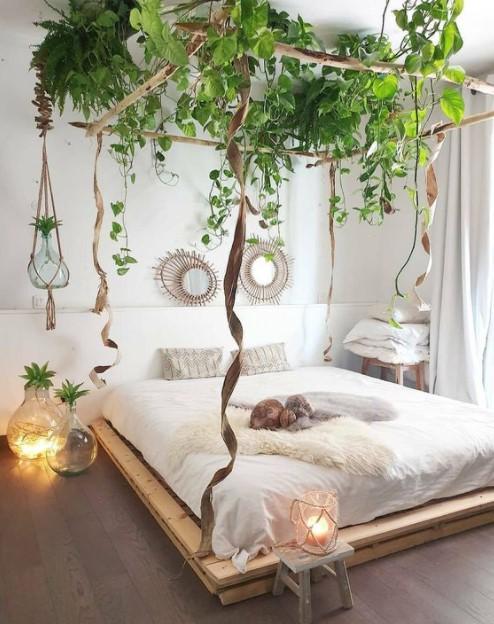 κρεβάτι φυτά ουρανός