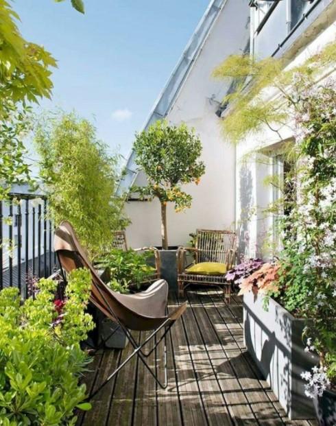 μπαλκόνι πολλά φυτά