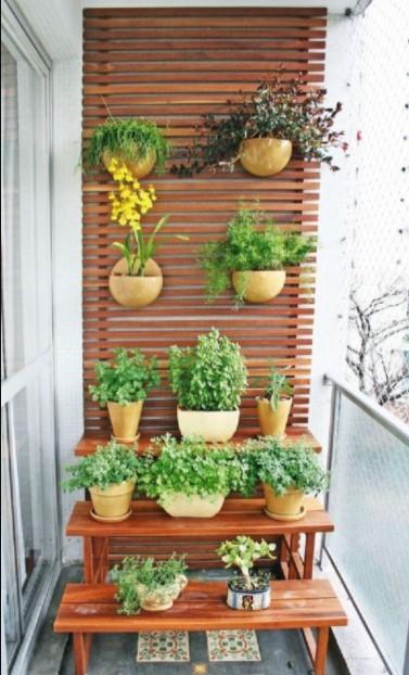βεράντα τοίχος ράφια φυτά