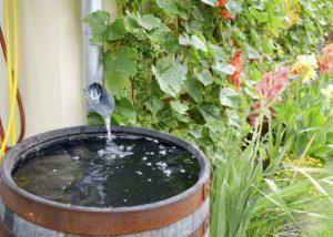 νερό σε βαρελι