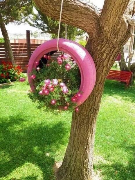 ροζ λάστιχα φυτά αυλή