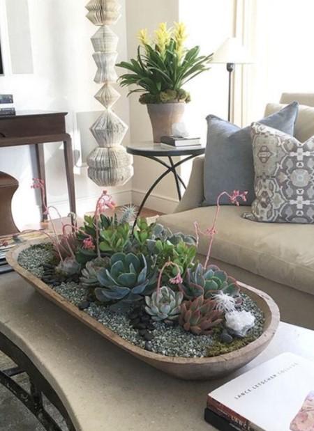 τραπέζι δίσκος φυτά