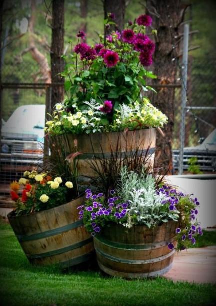 βαρέλια λουλούδια κήπος