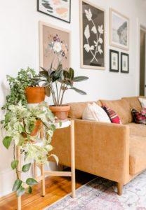 γλάστρες 7 κόλπα για να δοκιμάσεις στο σαλόνι σου