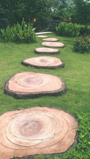 μονοπάτι κήπου κορμοί κήπο κορμούς δέντρων
