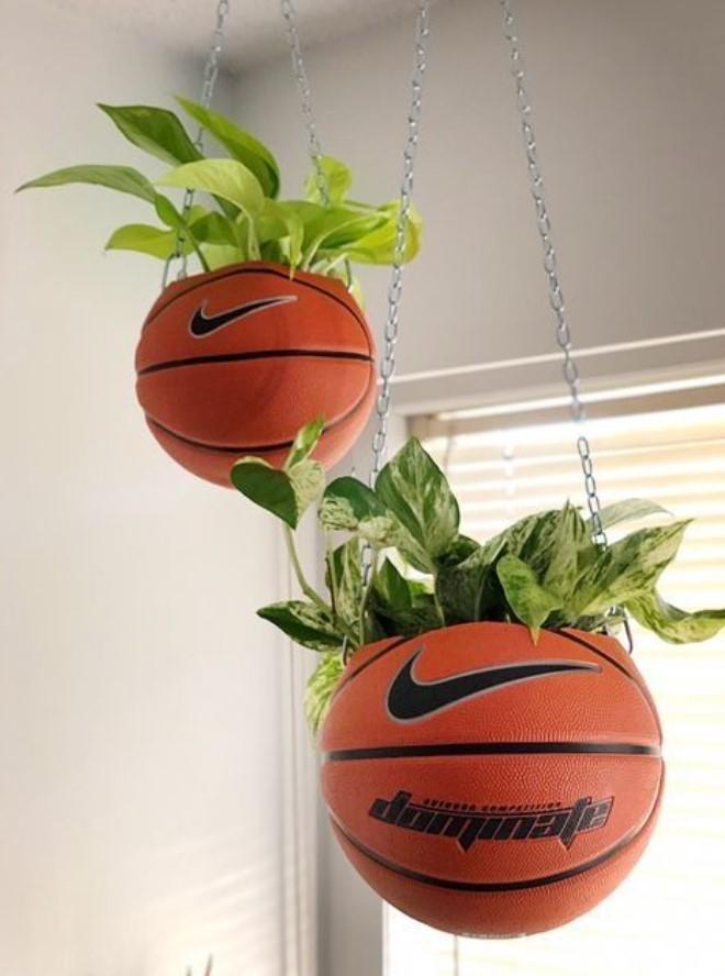 μπάλες του μπάσκετ για γλάστρες