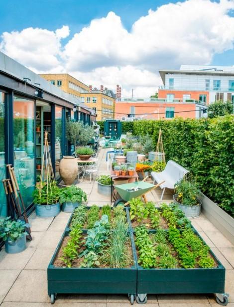 μπαλκόνι φυτεμένα λαχανικά μεγάλο μπαλκόνι