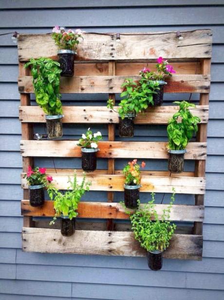 παλέτα φυτά διακοσμητικά τοίχου