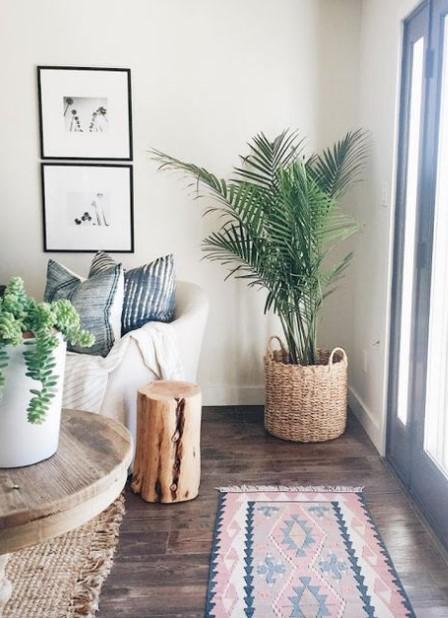 σαλόνι φυτό γωνία