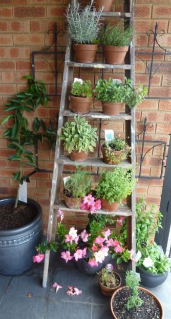 γλάστρα φυτά μπαλκόνι οικονομική διακόσμηση μπαλκονιού