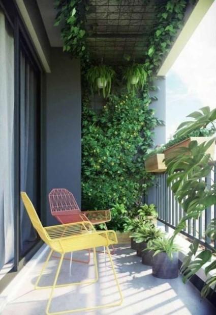 τοίχος γεμάτος φυτά μπαλκόνι οικονομική διακόσμηση μπαλκονιού