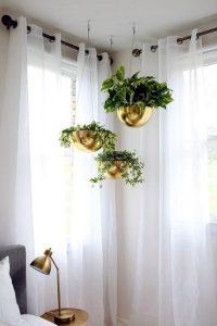 διακόσμηση εσωτερικού χώρου με κρεμαστά φυτά