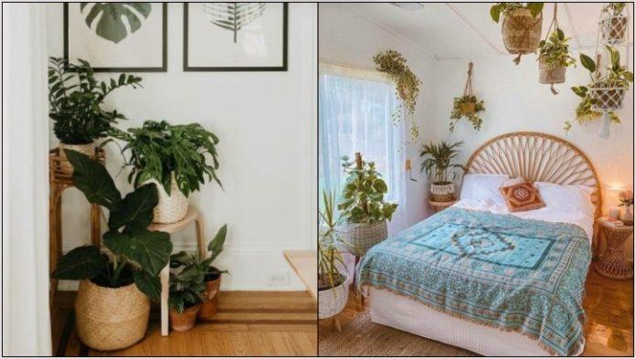 διακοσμήσεις φυτά κρεβατοκάμαρα