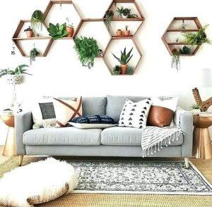 ράφια με φυτά πάνω από καναπέ