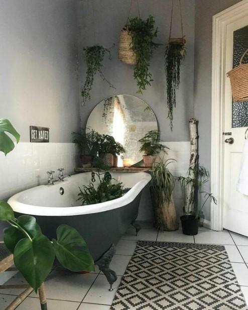 μπανιέρα πολλά φυτά