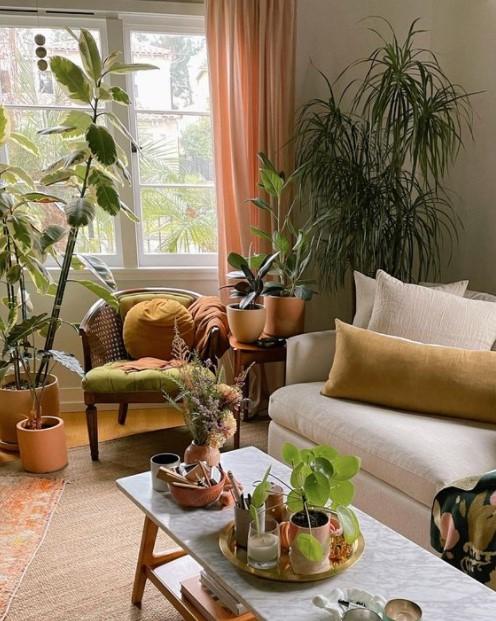 σαλόνι πολλά φυτά