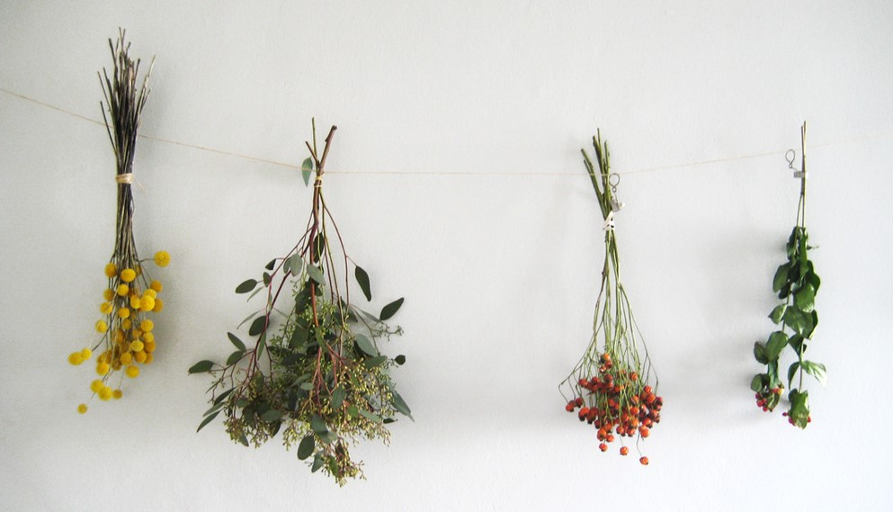 κρεμασμένα λουλούδια